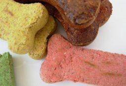 il-pet-food-e-un-tipico-sottoprodotto-della-filera-delle-carni