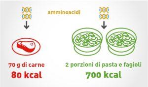 la-combinazione-di-cereali-e-legumi-e-spesso-indicata-come-un-adeguato-sostituto-della-carne-per-via-del-suo-apporto-proteico-in-quanto-le-carenze-di-aminoacidi-essenziali-dei-cereali-sono-co